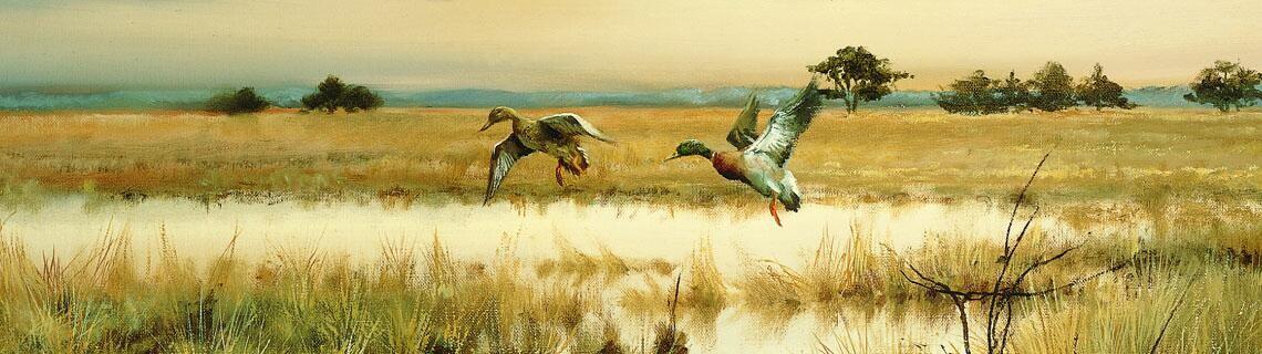 Welkom bij wildlife artist Pieter Verstappen
